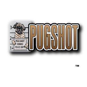Pug Shot 1
